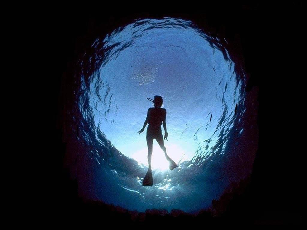 dream of diving